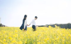korean couple photoshoot in jeju canola fields